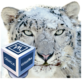 install Mac os x Snow Leopard on VirtualBox