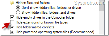 file extension type