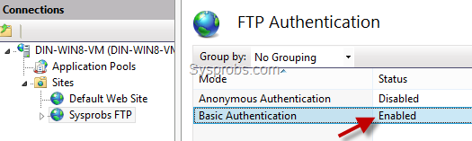 Enabled basic authentication
