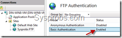 enabled basic auth