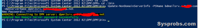 update non-domain password in dpm server