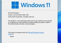 Download Windows 11 ISO and Install it on VMware Player